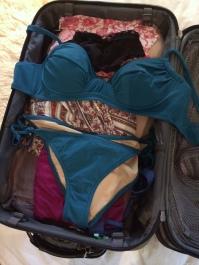 bikini_suitcase_0614