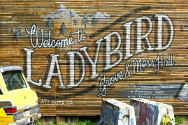 Ladybird Atlanta Beltline
